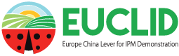 EUCLID Closing Events, 11-12 September 2019, Avignon, France.