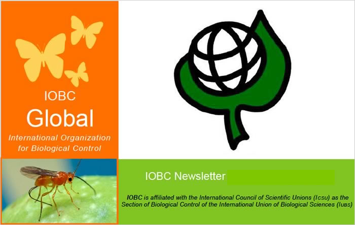 IOBC Global Newsletter
